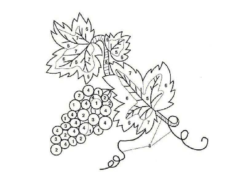 схема как вышить виноград гладью