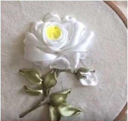 роза лентами